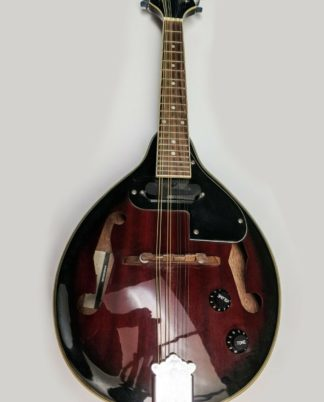 Stagg M50 E Electro-acoustic Bluegrass Mandolin